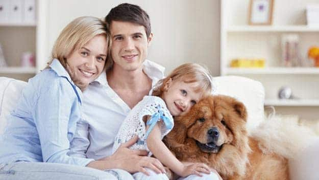 Wills & Trusts dog-young-family Direct Wills Knowle Grove